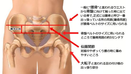 骨盤ベルト 腰痛